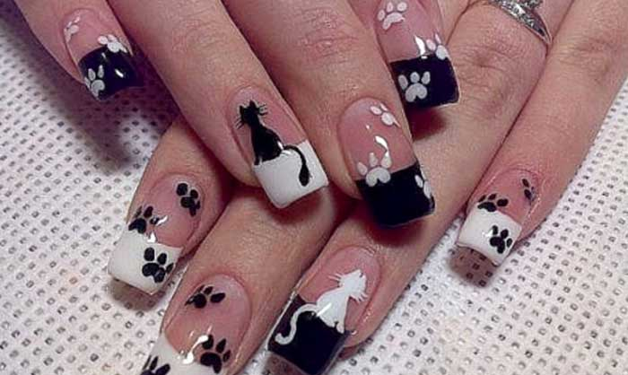 Черно-белый. Кошки. Следы