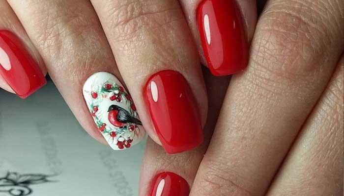 Снегирь на ногтях